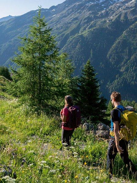 Hiking Programme